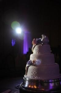 cakeuplight